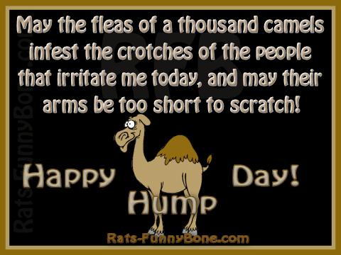 Joe Camel Hump Day Happy Hump Day Camel
